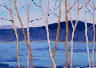 Birches by the River