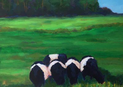 Five Cows