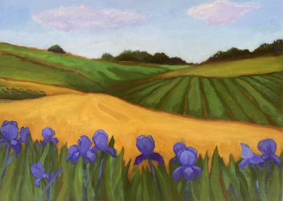 Irises and Fields
